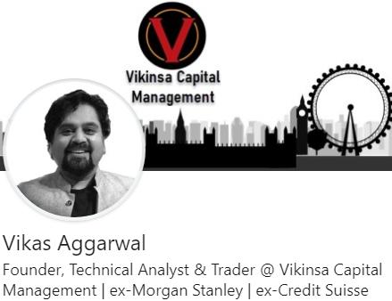 Vikinsa LinkedIn Profile